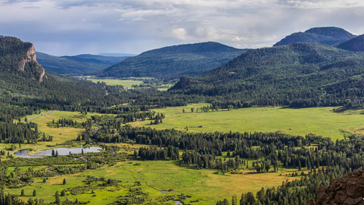 Pagosa Springs CO Landscape